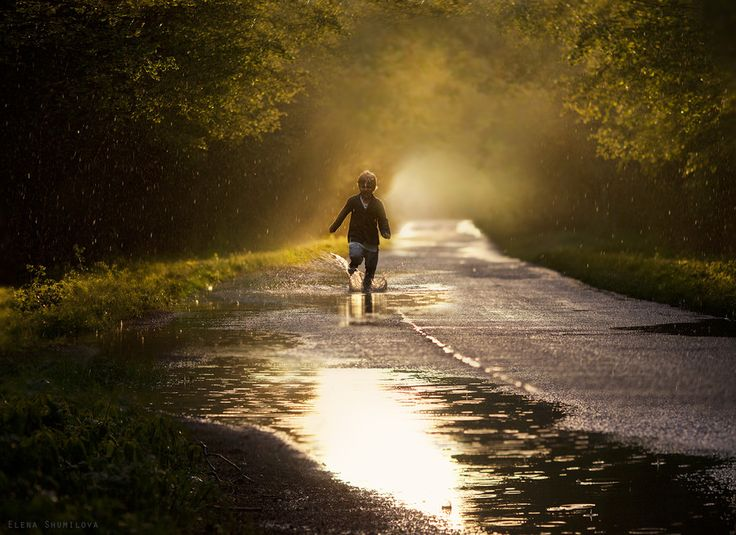 summer rain by Elena Shumilova on 500px