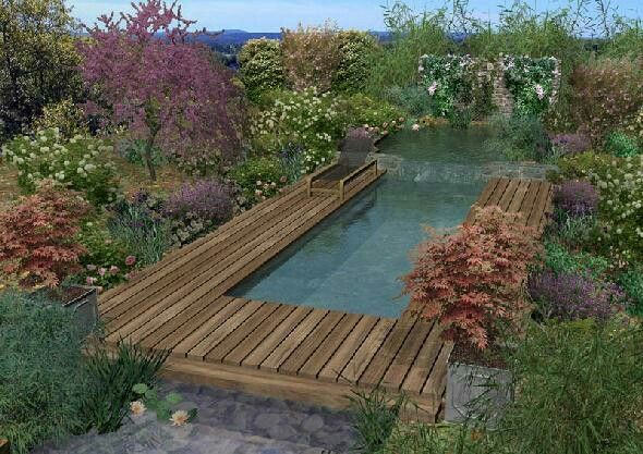 Natural pool made out of shipping container