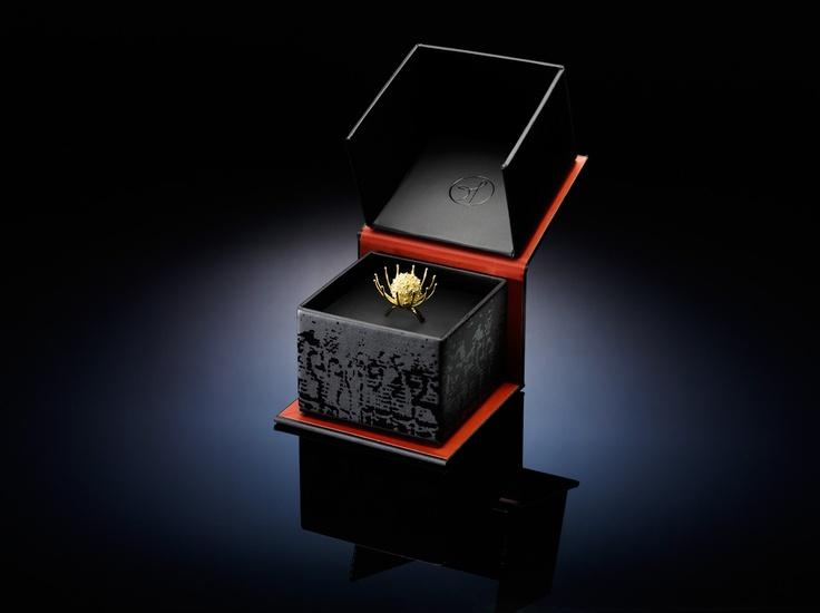 Cicuta ring in her lovely Soha box.