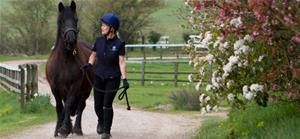 Glenda Spooner Farm, World Horse Welfare's Rescue & Rehoming Centre in Somerset, is a great free place to visit. Meet the rescued horses going through rehabilitation and those who are ready for rehoming, and enjoy a walk around the paddocks.
