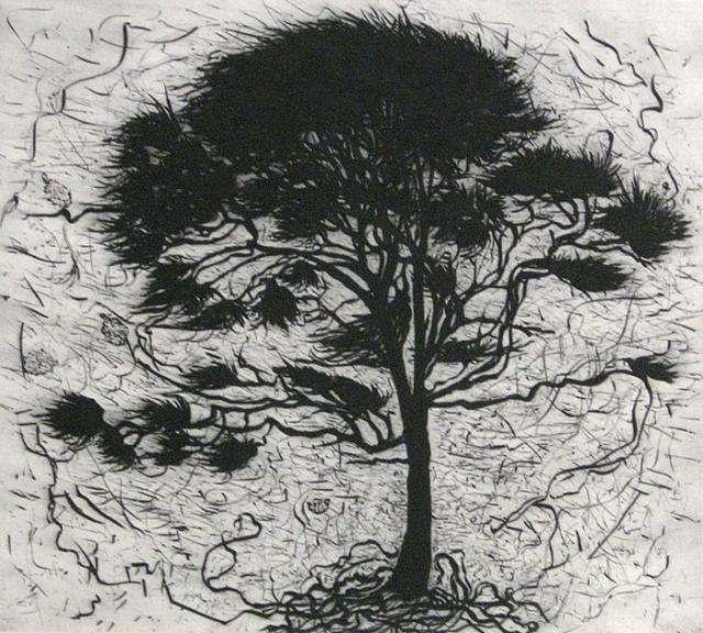 Hertha Kluge-Pott, Guardian, 2003, drypoint.