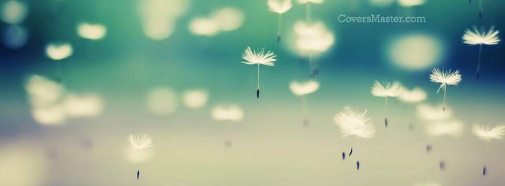 135 best Facebook covers images on Pinterest | Facebook timeline ...