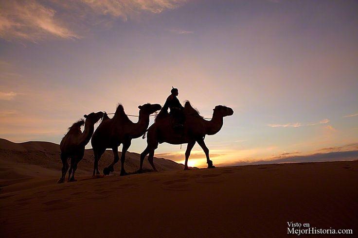 El pueblo nómada de Mongolia (10)