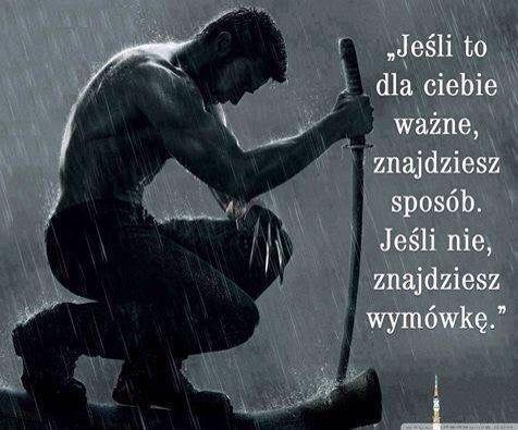 :) http://www.wiewiorka.pl