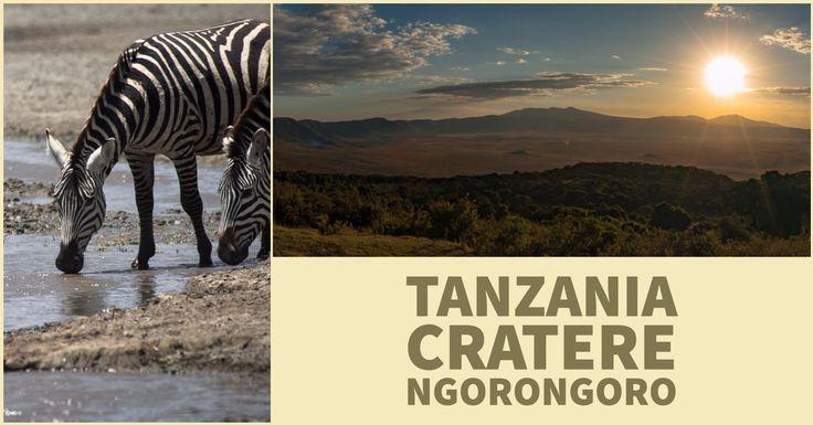 """Ngorongoro Crater, come arrivare, cosa vedere e tante altre info utili per pianificare il proprio safari nella """"Culla dell'Umanità""""."""
