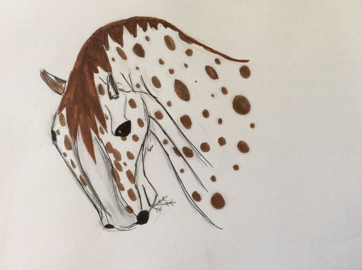 An appaloosa horse done by moose.