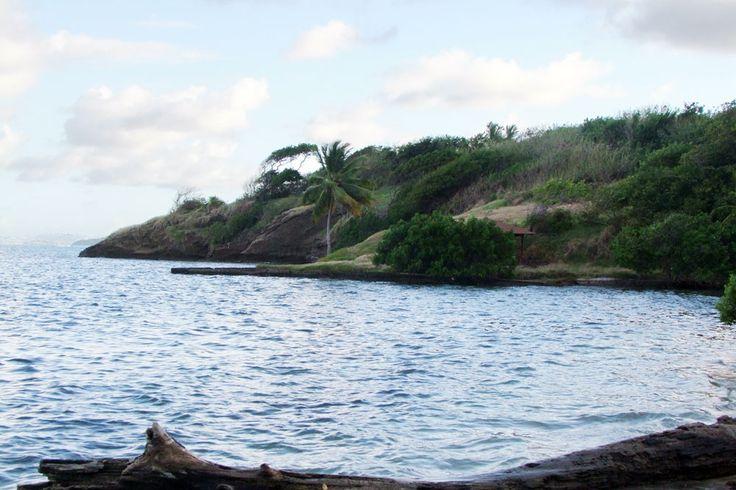 Baie Coco Le Robert Martinique