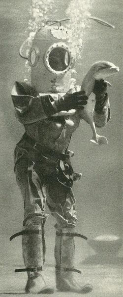 Diver with a baby porpoise at Marineland, Florida National Geographic~ July 1947