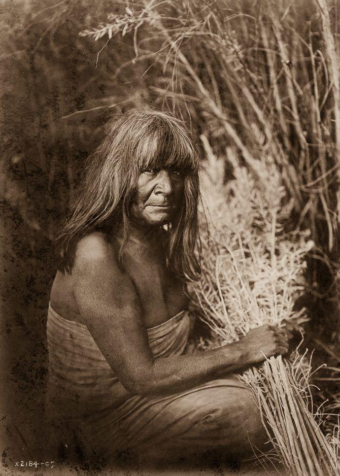 A Maricopa woman with arrow-brush stalks, 1907