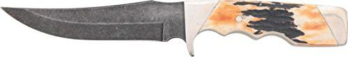 Special Offers - Bear & Son Cutlery 577D Genuine India Stag Bone Fingergroove Skinner with Leather Sheath Damascus Knife 9 1/4 - In stock & Free Shipping. You can save more money! Check It (October 07 2016 at 03:44AM) >> http://huntingknivesusa.net/bear-son-cutlery-577d-genuine-india-stag-bone-fingergroove-skinner-with-leather-sheath-damascus-knife-9-14/