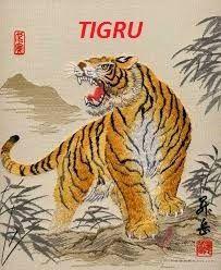 Blogul Dianei: Horoscop chinezesc 2015 - Tigru