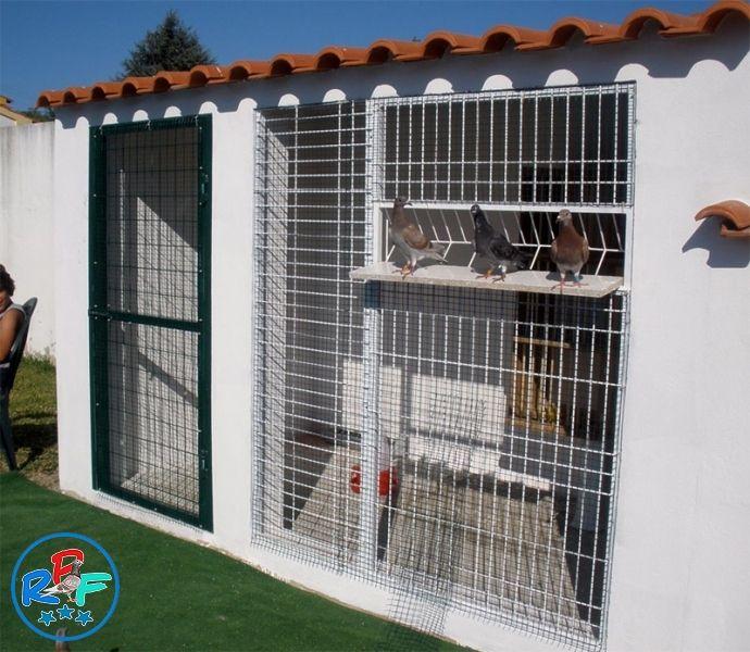 Pigeon loft design ideas and pigeon loft plan