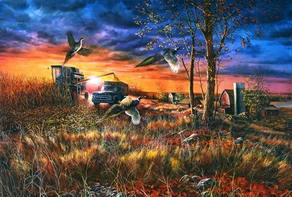 Picture of Harvest Ringnecks | Jim Hansel , Rudi Reichardt ...