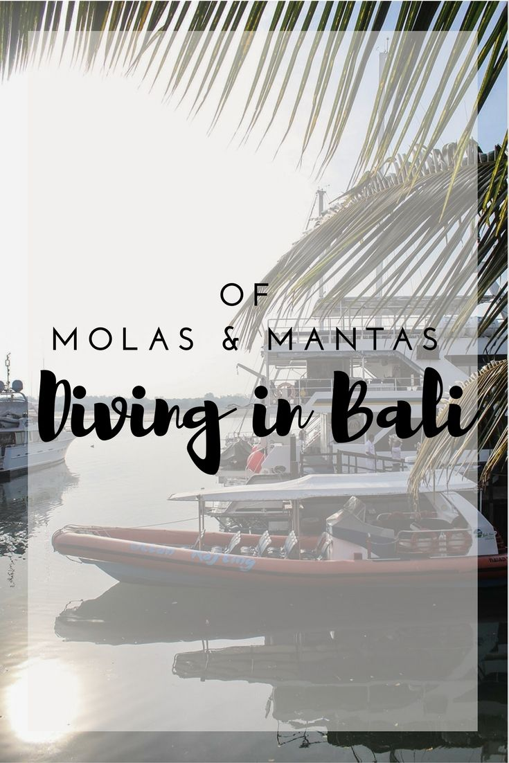 Do you want to find Nemo, mola molas & mantas? Then diving in Bali should be on your agenda. Come along to discover the water world of Indonesia and the scuba paradise of Nusa Lembongan. Click through and follow me underwater!