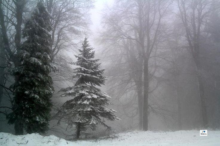 Kollégánk Magyarország legmagasabb pontjára is felment, hogy beszámolhasson róla, milyen gyönyörű lett egy nap alatt a téli Mátra.