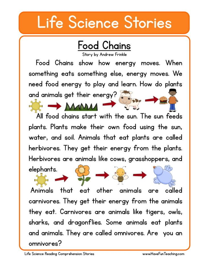 Reading Comprehension Worksheet Food Chains
