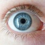 Gen Mata Biru Sudah Ada Pada Manusia Zaman Batu