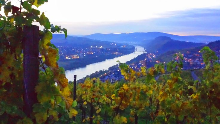 overview spektakular mosel valley