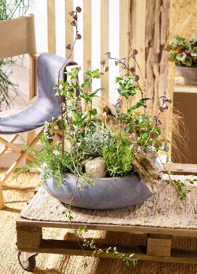 """Man nehme : Erde, Pflanzen, Kräuter, eine Zementschale und Deine Lieblingsfundstücke aus der Natur. Fertig ist """"Outdoor love"""".   Die Pflanzung ist natürlich, robust und unkompliziert. Noch dazu ist sie pflegeleicht und sehr langlebig. Auf Deiner Terrasse aus Bankirai wirkt sie ebenso wie in einem urbanen Interieur."""
