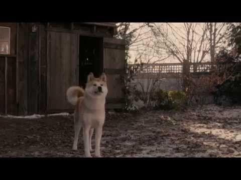 Hachiko - il tuo migliore amico - YouTube