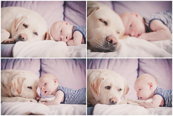 newborn photoshoot with dog photo by Teplova Zhanna warmphoto.com