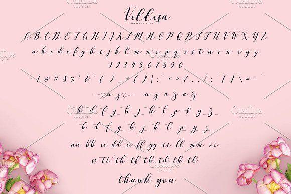 Vellesa Script by pointlab on @creativemarket