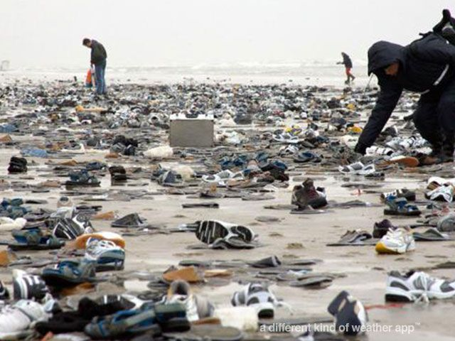 Swackett Fun Fact: On the Netherlands' Terschelling Island, thousand of sneakers washed up on the beach in February 2006 when containers from the P&O Nedlloyd ship 'Mondriaan' fell out to the sea after getting caught in a storm.