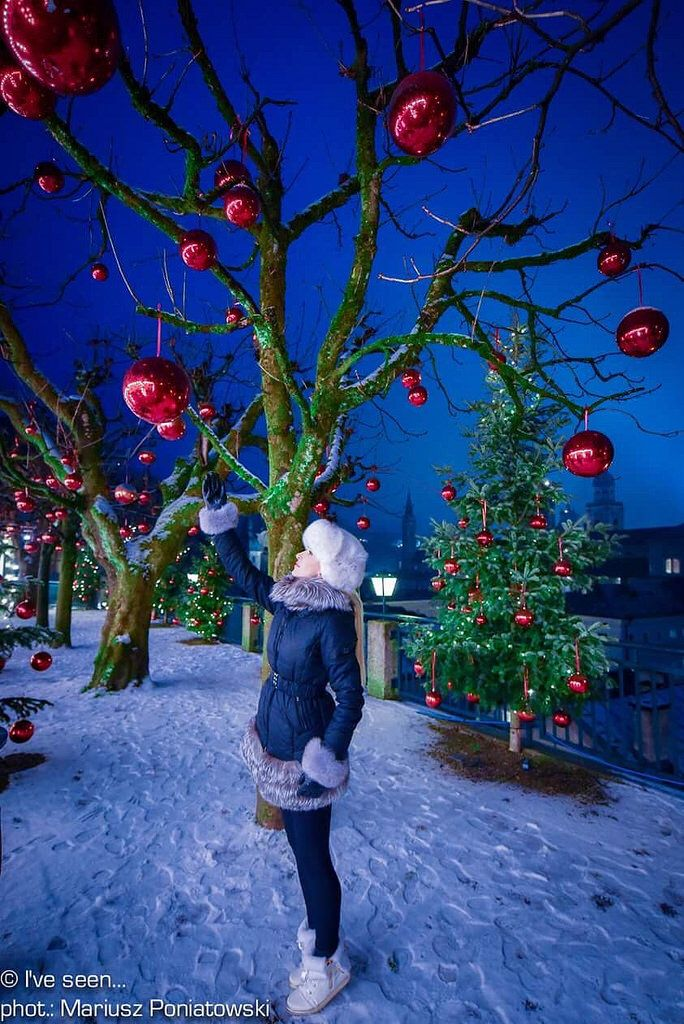 Merry Christmas 🎄 from Magic Garden on the hill of Hohensalzburg Castle, Salzburg, Austria