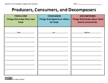 Printables Producers Consumers And Decomposers Worksheet 1000 images about 5th grade science on pinterest graphic producers consumers decomposers organizer
