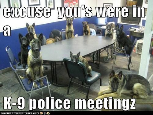 Excuse you's! We're in a k9 police meeting.