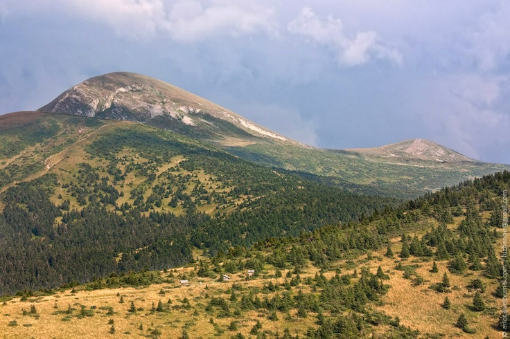 Hoverla and a part of Chornogora ridge / Говерла и часть Черногорского хребта, Карпаты