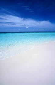 Never been here yet, but I want to go! Gulf Shores, Alabama