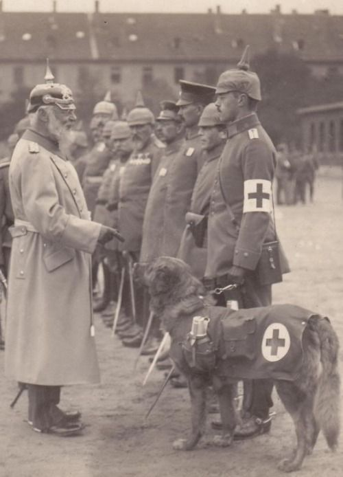 Bavarian medic and dog being inspected by King Ludwig.