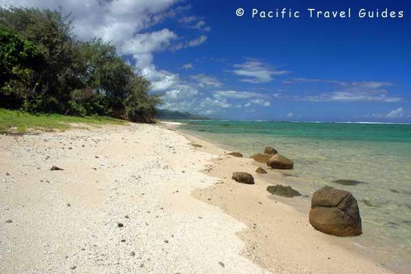 36 Best Under The Sea Images On Pinterest Fiji Fiji