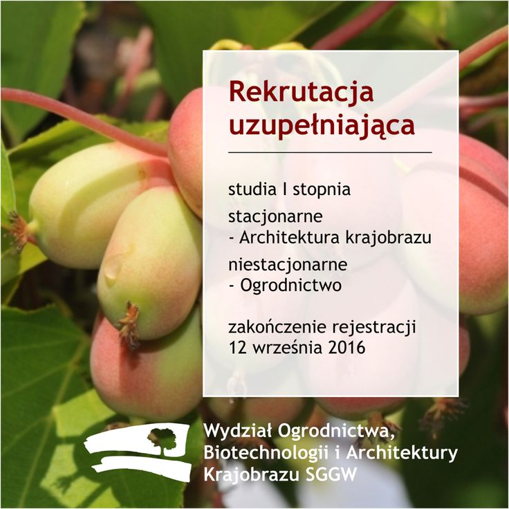 Trwa rekrutacja uzupełniająca na studia I stopnia stacjonarne - Architektura krajobrazu i niestacjonarne - Ogrodnictwo, rekrutacja kończy się 12. września, ezgamin z rysunku odręcznego 14. września 2016 r. #sggw #wobiak #ArchitekturaKrajobrazu #Ogrodnictwo #rekrutacja