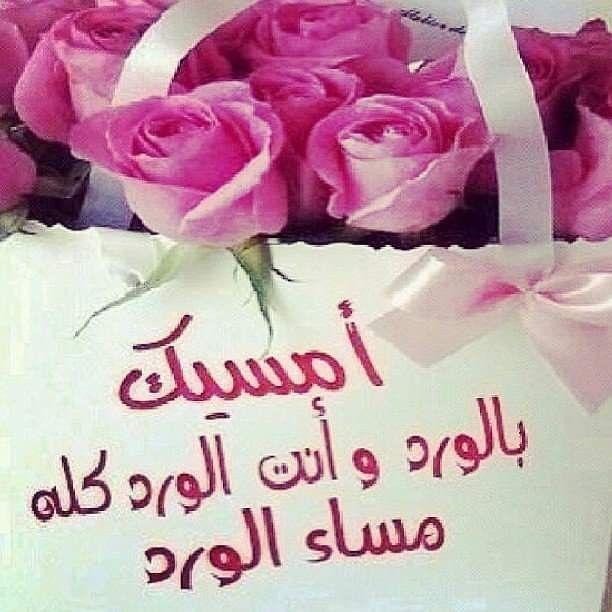 مساء الخير شعر Good Evening Good Morning Gorgeous Rose