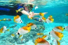 Snorkling in Rarotonga. Cook Islands. South Pacific