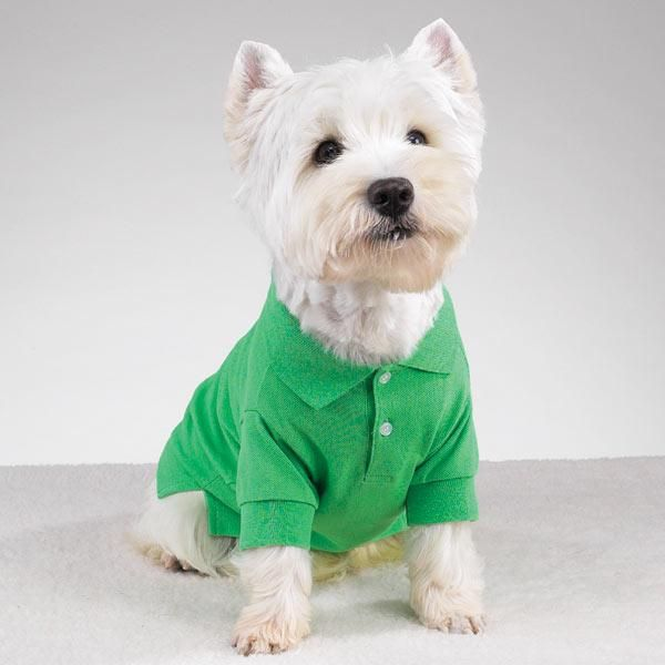 Ropa para perros on Pinterest | Patrones, Pet Clothes and Moda