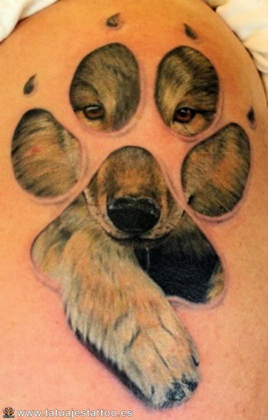 tatuajes de ositos | Bear Tattoo | Pinterest | Tattoo and ...