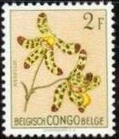 Stamp: Ansellia africana (syn.Ansellia gigantea) (Belgian Congo) (Flowers) Mi:BE-CD 306,Sn:BE-CD 274,Yt:BE-CD 313,Sg:BE-CD 307,Bel:BE-CD 313