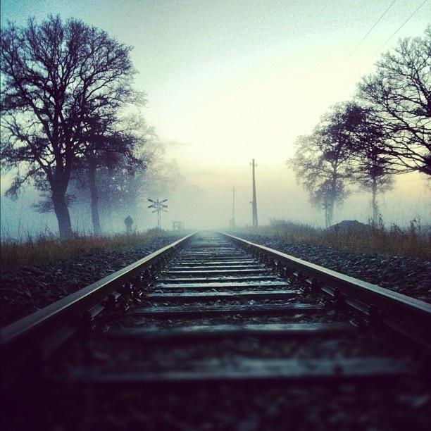 Rails & Mist