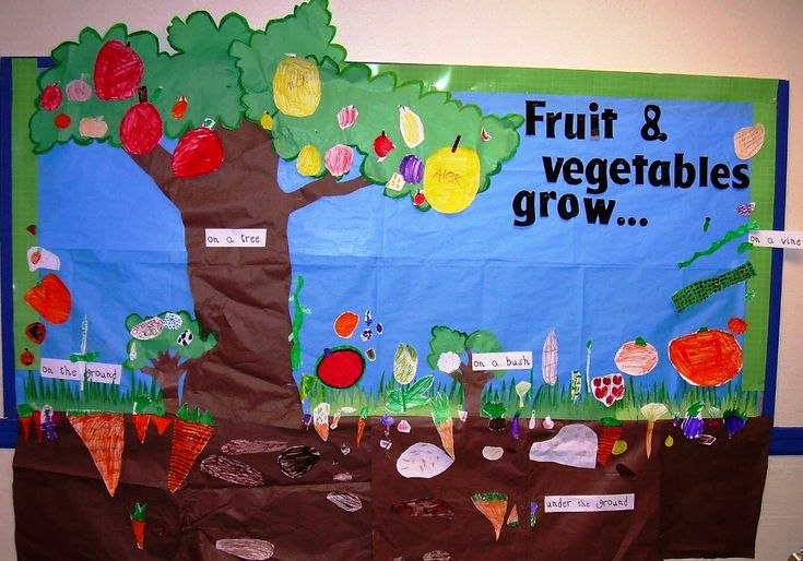 Jungle Themed Bulletin Board Ideas For Teachers Baby