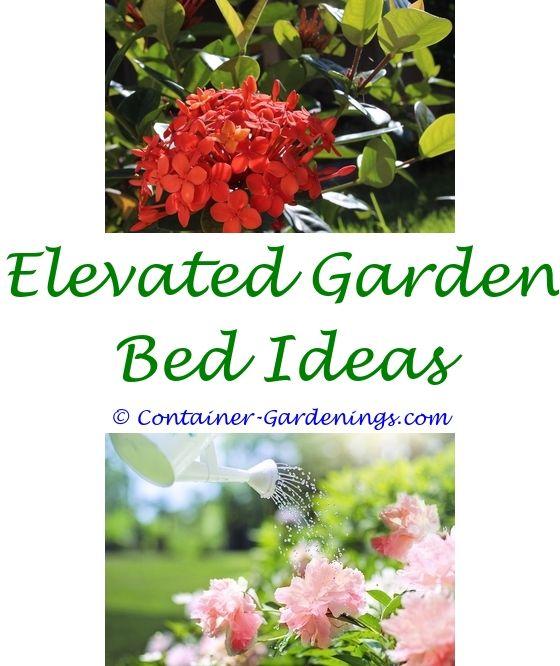 Garden Shopping Garden ideas, Small gardens and Gardens
