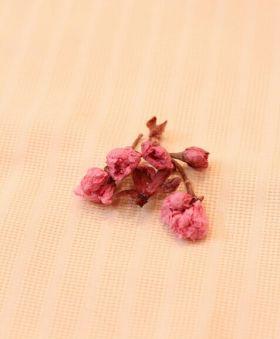 「塩漬け桜の咲かせ方☆」きょうこcafe | お菓子・パンのレシピや作り方【corecle*コレクル】