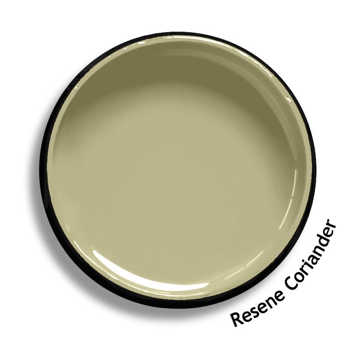 Resene Coriander is a muted herbal green. From the Resene Multifinish colour collection. Try a Resene testpot or view a physical sample at your Resene ColorShop or Reseller before making your final colour choice. www.resene.co.nz