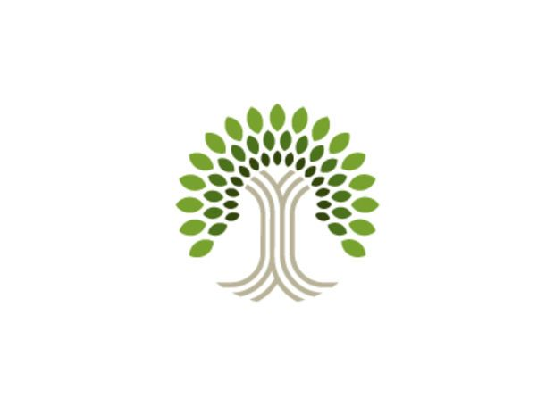 Best 25+ Tree logos ideas only on Pinterest | Roots logo, Tomas ...