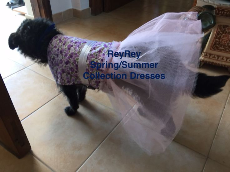 Jessy my super model presenting the spring summer dress designed and handmade by me ReyRey Cat & Dog Beds