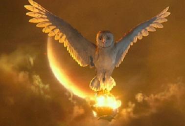 Owl Guardian of Ga'hoole