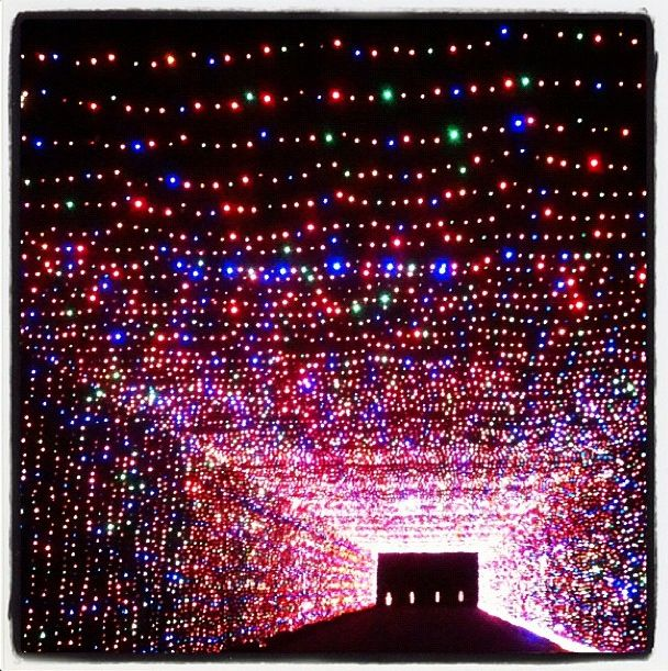 Christmas Decorations Arlington Tx: 10 Best Images About Prairie Lights Grand Prairie, Texas