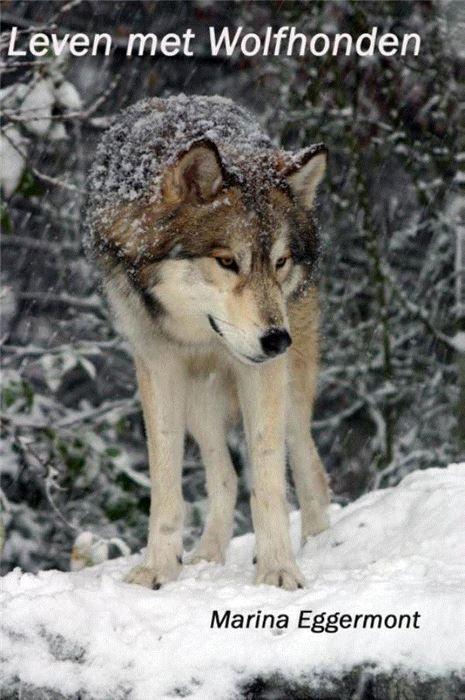 """Leven met wolfhonden  Heeft u altijd al een wolfhond willen opnemen in uw gezin? Of heeft u altijd al een andere oerhond willen hebben zoals Akita Inu Shiba Inu Siberian Husky Malamute etc? Leest u zich dan eerst in wat er achter deze mooie verschijningen voor karakters zich schuilen...zodat u weet hoe u leven zal veranderen om een oerhond te kunnen bieden wat hij/ zij nodig heeft. Het boek """"Leven met wolfhonden"""" geschreven door auteur Marina Eggermont en uitgegeven door Uitgeverij Animal…"""